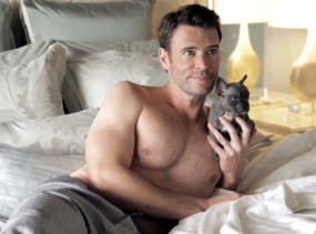 rs_560x415-141001184138-1024.Scott-Foley-Dog.ms.100114_copy.jpg
